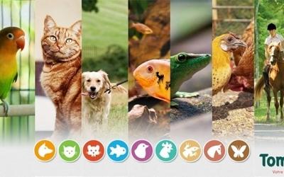 Animalerie Tom & Co ouverte