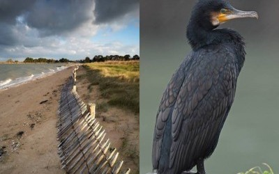 Regards Nature en presqu'île