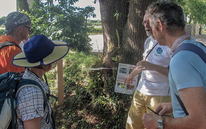 Rando'clim à Guérande : saisir l'impact du changement climatique