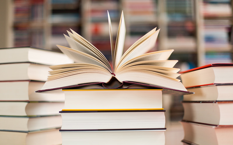 Braderie, Salon, BD : les événements littéraires autour de Saint-Nazaire