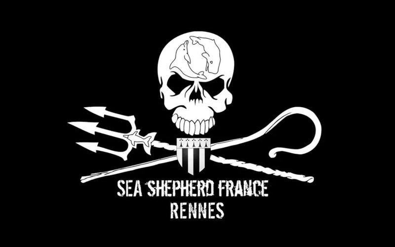 Saint-Nazaire : les baleineaux à la rescousse de Sea Shepherd