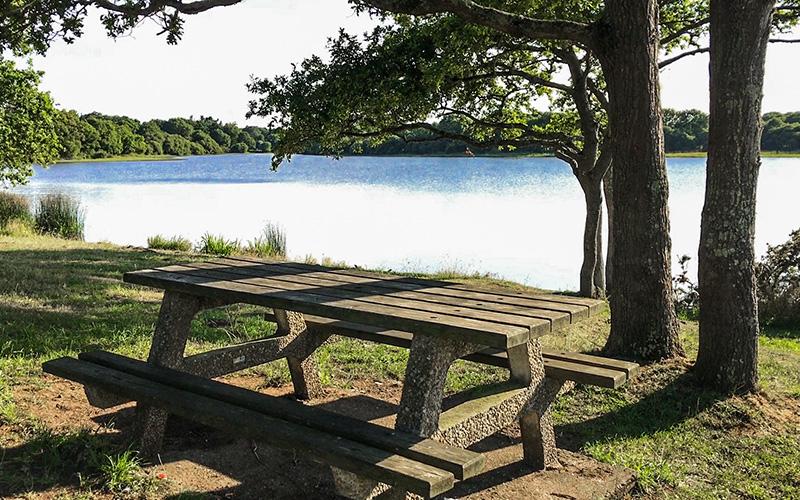 Guérande : la route-digue de l'étang de Sandun se refait une beauté