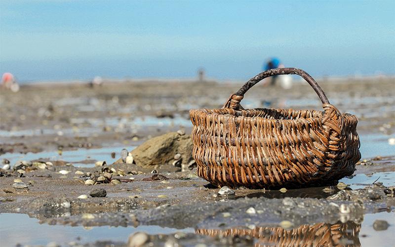 Loire-Atlantique : la pêche de loisir interdite sur tout le littoral