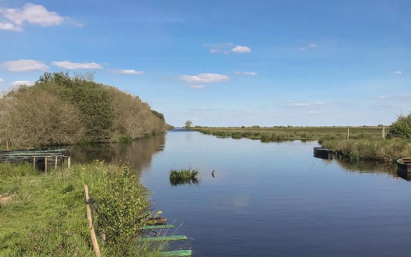 Le Parc Naturel Régional de Brière reporte sa fête des 50 ans du Parc