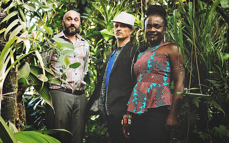 Saint-Nazaire : une top semaine au VIP avec 4 soirées musicales gratuites