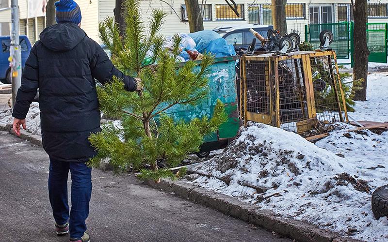 Saint-Nazaire : comment se débarrasser de ses sapins de Noël et coquilles vides