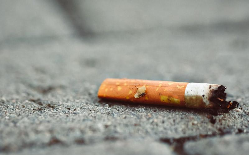 Pornichet : inauguration de 12 nouveaux espaces sans tabac