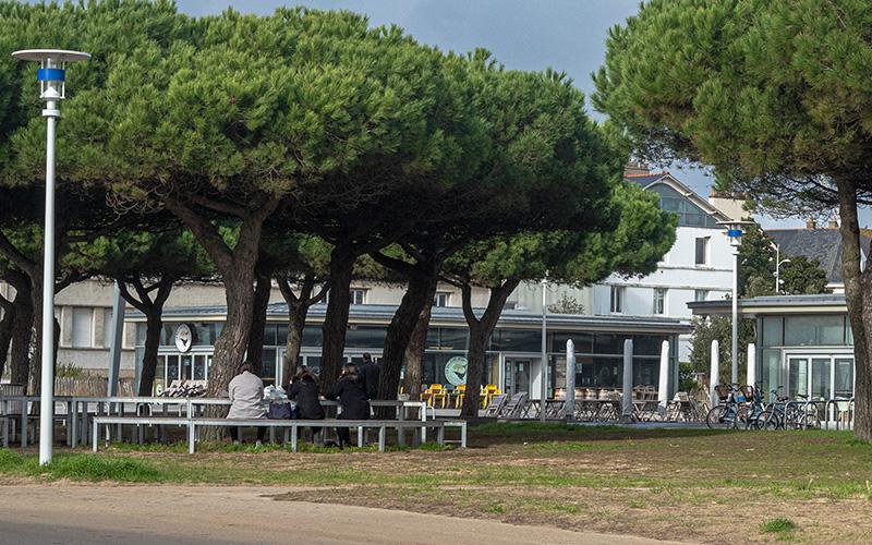 Saint-Nazaire : un parcours photo grand format dans la ville cet été