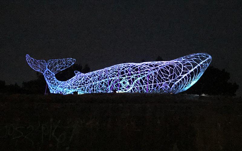 À Saint-Brévin, serpent d'océan et baleine lumineuse font bon ménage