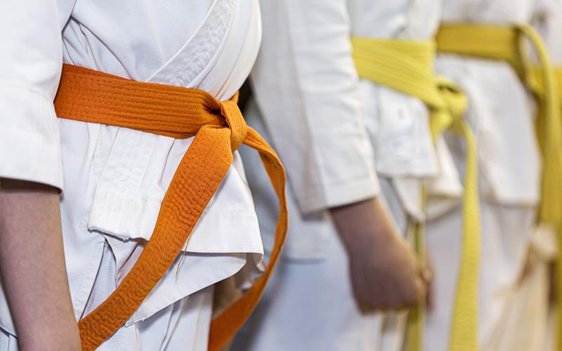 Saint-Nazaire : un joli cadeau de fin de saison pour le Judo Club Nazairien