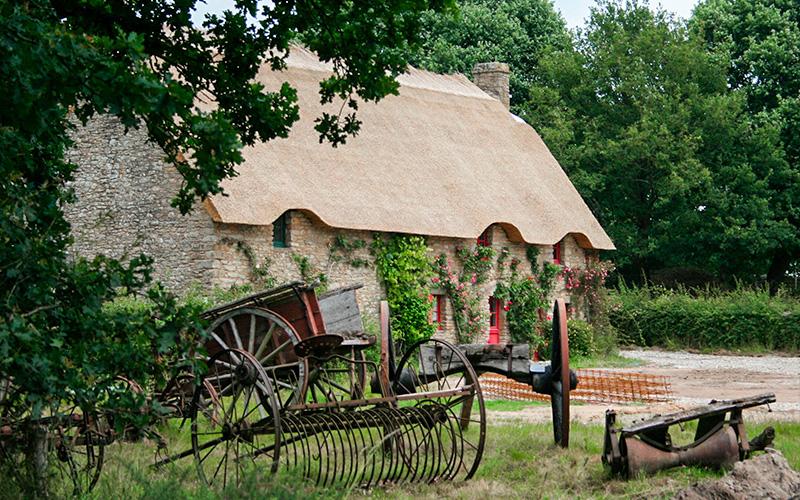 Parc de Brière : les toits de chaume souffrent de la mauvaise qualité des roseaux